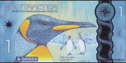 Antarctique-pNL09