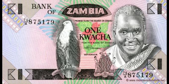 Zambie-p23b